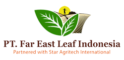 Far East Leaf Indonesia